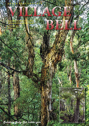 Salisbury Gully Cover photograph: Cameron Rocke