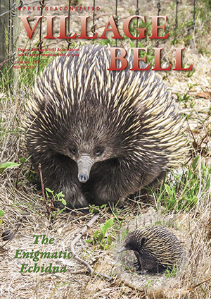 The enigmatic echidna. Cover photograph: Marianne Rocke