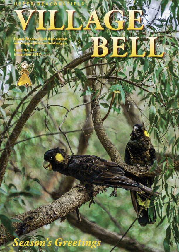 Yellow-tailed black cockatoos. Cover photograph: Cameron Rocke